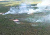 В Туве действует один лесной пожар