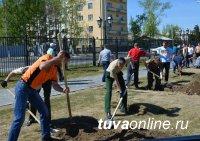Ключевая достопримечательность Тувы – парк «Центр Азии» – пополнился новыми соснами