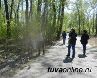 Тувинский штаб ОНФ подключился к защите леса