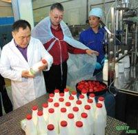 Тува усиливает господдержку производства молока и вложит в это направление в 2015 году более 9 млн. рублей