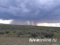Синоптики прогнозируют 17 июня грозы в Туве