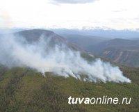 Все действующие лесные пожары в Туве находятся в авиазоне