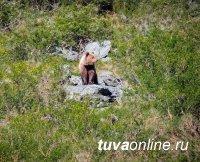 В Ергаках медведь напал на спящих в палатке туристов
