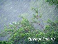 В Туве прогнозируют 5 июля сильные ливни