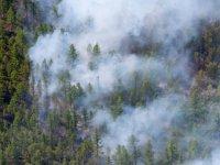 В ликвидации лесных пожаров в Туве задействовано 360 человек