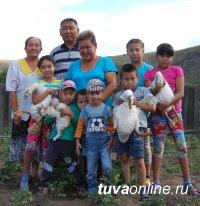 Ассоциация приемных семей Тувы объединила 94 семьи