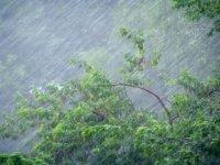 В Туве 24 июля ожидаются грозы и сильный ветер