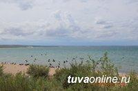 Всероссийская акция помогла очистить от мусора территорию озера «Торе-Холь» в Туве
