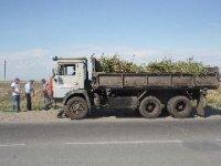 Кызыл: Грузовики, перевозившие мусор без покрытия пологом, оштрафованы