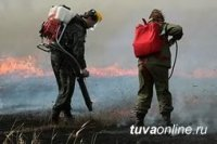 В Туве за сутки ликвидировано 2 лесных пожара, локализовано 6