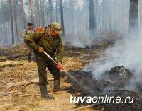 В ликвидации лесных пожаров в Туве участвуют более 300 человек