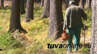 Тува: с собирателями ягод и грибов, любителями отдыха в лесу проводятся профилактические беседы