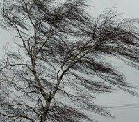 В Туве ожидаются неблагоприятные погодные явления!