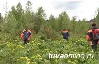 Спасатели Тувы ищут двух человек, пропавших при сборе ягод и орехов в тайге