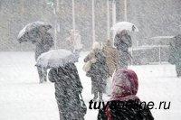 На территории Тувы ожидается резкое понижение температуры воздуха с выпадением снега и усилением ветра