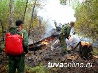 В Туве закрыт пожароопасный сезон на землях лесного фонда
