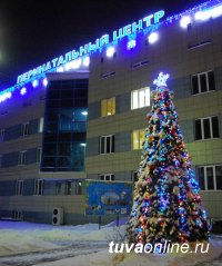 Новогоднее настроение Кызыла создают трудовые коллективы города