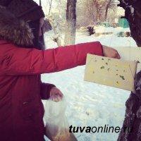 """Активисты движения """"Добрые сердца Тувы"""" начали установку кормушек для птиц"""