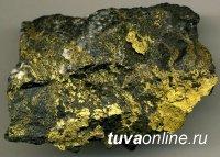 Росгеология ищет в Туве новые месторождения рудного золота