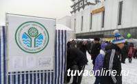 В Кызыле к Шагаа будут проведены ярмарки выходного дня