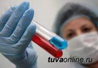 В Туве зарегистрировано 8 случаев заболевания «свиным гриппом»