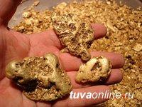 Полицейские Тувы задержали жителя Хакасии, похитившего самородное золото на Тодже