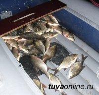 В Туве в 2015 году штрафы за незаконный вылов рыбы составили 1 млн. 615 тыс рублей