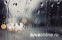 В Туве ожидаются ветер и сильный снег с дождем
