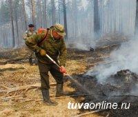 В Тандинском кожууне Тувы зарегистрирован первый лесной пожар