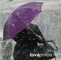 Туву ожидают сильный ветер и мокрый снег