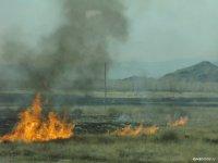 В Туве составлен первый протокол об административном правонарушении из-за поджога сухой травы