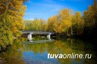 Посади фамильное дерево в Национальном парке Тувы