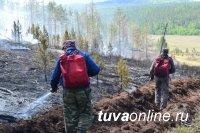 Лесной пожар в Каа-Хемском кожууне Тувы ликвидирован, возникли два новых - в Чаа-Хольском и Тоджинском