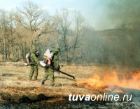 Режим повышенной готовности из-за лесных пожаров введен в Туве