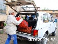 """В Кызыле идет выдача """"социального"""" картофеля"""