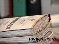 В Туве возбудили уголовное дело по факту лесного пожара
