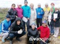 Студенты-агрономы ТувГУ проходят учебно-полевую практику по почвоведению в селе Сосновка
