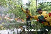 В Каа-Хемском и Тоджинском кожуунах Тувы борются с 4 лесными пожарами