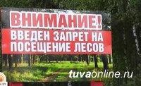 В Туве продлен особый противопожарный режим