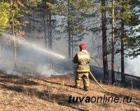 В Туве действуют два лесных пожара