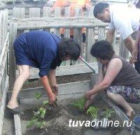 Союз женщин РТ организовал выездной мастер-класс по огородничеству в Эрзинском кожууне