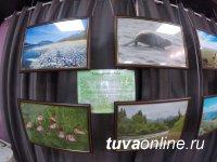 В Доме туризма в Кызыле открыта передвижная фотовыставка «Заповедное ожерелье Енисея»