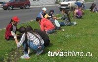 Дети трудового отряда гимназии № 5 помогают благоустраивать Кызыл