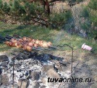 В Дзун-Хемчикском районе Тувы молодые люди оштрафованы за разведение костра в лесу для приготовления шашлыков