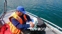 Инспекторы ГИМС во время рейда на озере Чагытай Тандинского района выявили нарушителей