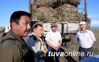 Глава Тувы Шолбан Кара-оол поставил задачу организованно провести кормозаготовительную кампанию