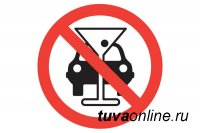 В Туве мать попавшегося пьяным водителя «врукопашную» напала на полицейского