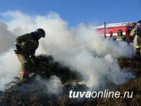 В Туве детская шалость с огнем привела к возгоранию сена