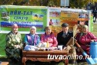 Участники проекта «Здоровое село» сумона Ийи-Тал заняли первое место на республиканском фестивале «Тараа дою»