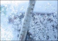 В отдельных районах Тувы два дня будут стоять 40-градусные морозы